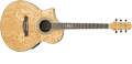 Voir la fiche IBANEZ EW20LASE-NT 