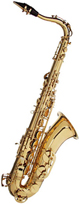 Voir la fiche FRIEDRICH MULLER SAXO TENOR TN300 