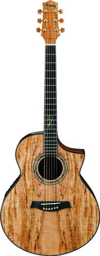 guitare folk western ibanez ibanez ew50sme nt achat vente medium musique music leader rouen. Black Bedroom Furniture Sets. Home Design Ideas