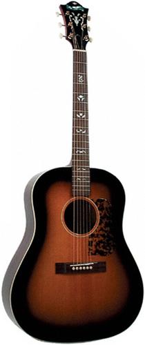 Guitare Folk/Western BLUERIDGE BG140