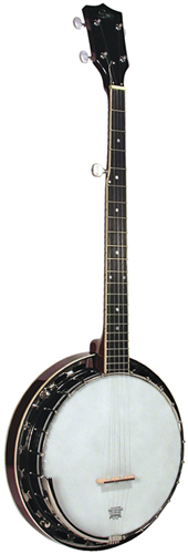 Guitare Folk/Western ROVER RB25