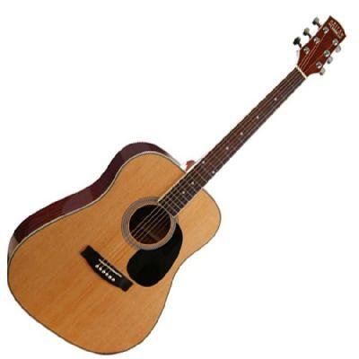 Guitare Folk/Western Dallas WT80NAT