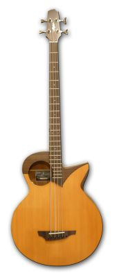 Guitare Basse Stanford Robot 4 Fretted Electro Acoustique