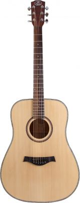 Guitare Folk/Western D2N DREADNOUGHT