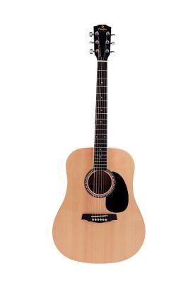 Guitare Folk/Western SD20