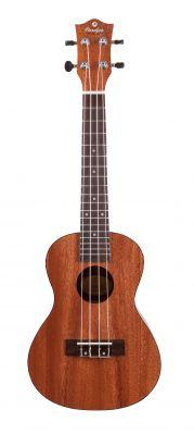 Instruments à cordes JM FOREST BC210