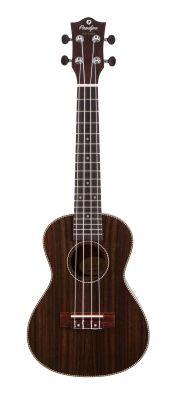 Instruments à cordes JM FOREST BC220