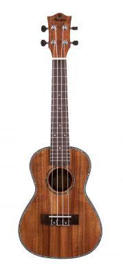 Instruments à cordes JM FOREST BC2380