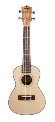 Instruments à cordes JM FOREST BC25 ZEBRA