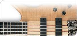 Guitares Basses 5 & 6 cordes